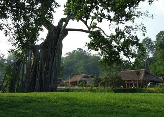 Hướng dẫn lịch trình phượt Tuyên Quang tự túc: Đi đâu, chơi gì ở Tuyên Quang? Địa điểm tham quan nổi tiếng ở Tuyên Quang