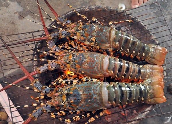 Du lịch Khánh Hòa nên ăn món gì? Ăn gì khi du lịch Khánh Hòa? Thưởng thức đặc sản Khánh Hòa