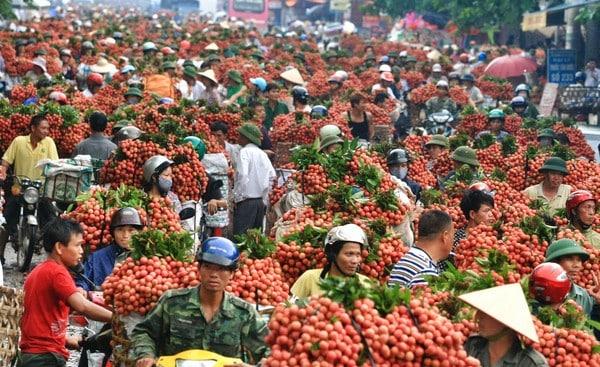 Hướng dẫn du lịch Bắc Giang: Nên phượt Bắc Giang khi nào? Thời điểm lí tưởng đi Bắc Giang