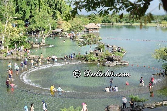 Chơi gì vui, hấp dẫn ở công viên Suối Mơ? Cảnh đẹp ở khu du lịch Suối Mơ