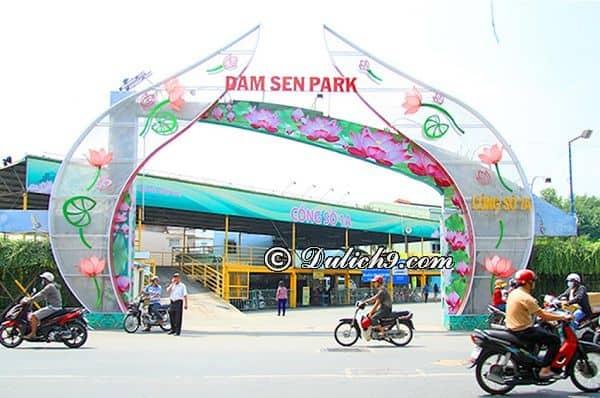 Thời gian hoạt động của công viên văn hóa Đầm Sen: Kinh nghiệm đi chơi ở khu công viên văn hóa Đầm Sen
