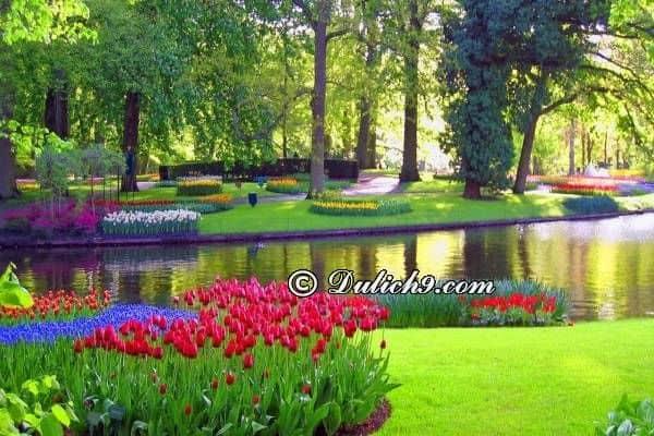 Kinh nghiệm du lịch Hà Lan giá rẻ: Du lịch Hà Lan nên đi đâu chơi/ Địa điểm tham quan khi du lịch Hà Lan