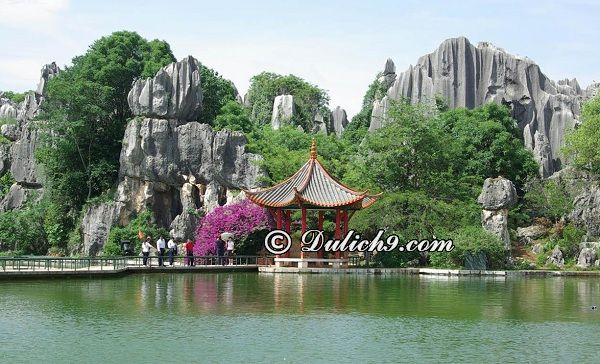 Nên đi đâu chơi khi du lịch Tô Châu? Địa điểm tham quan ở Tô Châu đẹp, nổi tiếng: Kinh nghiệm du lịch Tô Châu đẹp, tiện nghi
