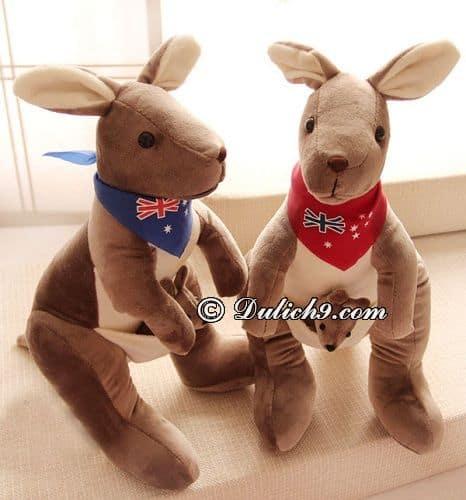 Mua quà lưu niệm ở Úc để tặng người thân, bạn bè: Du lịch Úc nên mua gì làm quà?
