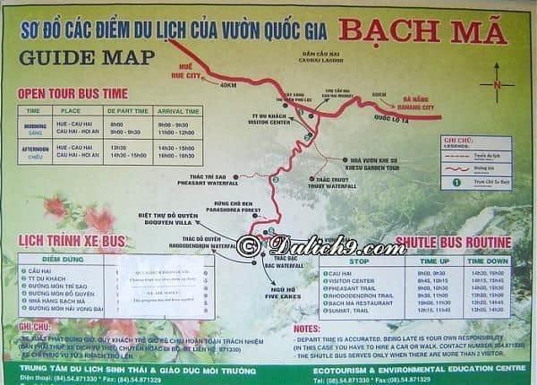 Phượt VQG Bạch Mã nên ở đâu/ Cắm trại, nghỉ ngơi ở VQG Bạch Mã