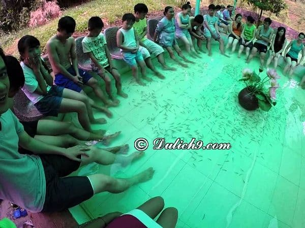 Chơi gì ở khu Hòa Phú Thành? Vui chơi, giải trí ở Hòa Phú Thành: Khu du lịch Hòa Phú Thành có gì thú vị, hấp dẫn?