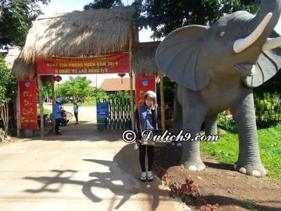 Chơi gì ở khu du lịch Kotam? Kinh nghiệm tham quan, vui chơi, ăn uống ở khu du lịch KoTam (Buôn Ma Thuột)