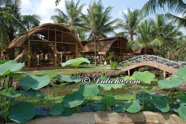 Kinh nghiệm đi làng du lịch Tre Việt: Hướng dẫn đi tham quan, vui chơi ở làng du lịch Tre Việt