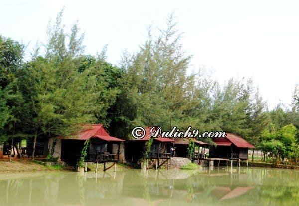 Khu du lịch sinh thái Đồng Cao có gì chơi/ Khám phá Cao Minh: Hướng dẫn đường đi tham quan khu du lịch Cao Minh, Đồng Nai