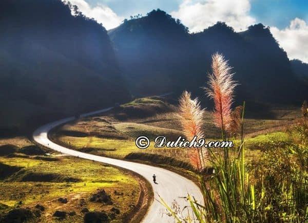 Các địa điểm du lịch nổi tiếng ở Mộc Châu: Nên đi chơi đâu khi phượt Mộc Châu?