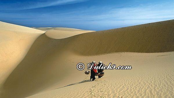 Đồi cát ở Mũi Né - điểm đến được yêu thích tại Bình Thuận: Nên chơi ở đâu khi phượt Bình Thuận?