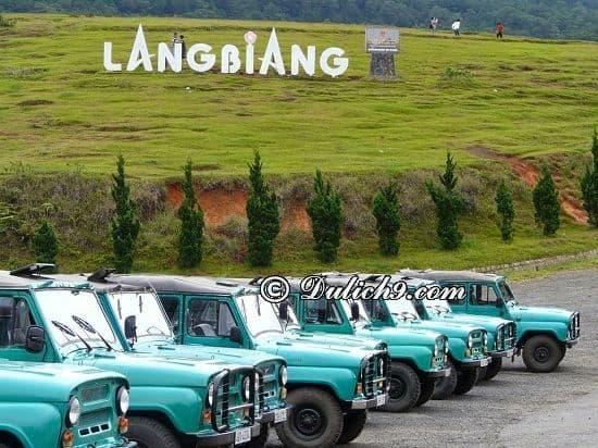 Kinh nghiệm chinh phục núi Langbiang: Hướng dẫn đi tham quan, vui chơi ở núi Langbiang