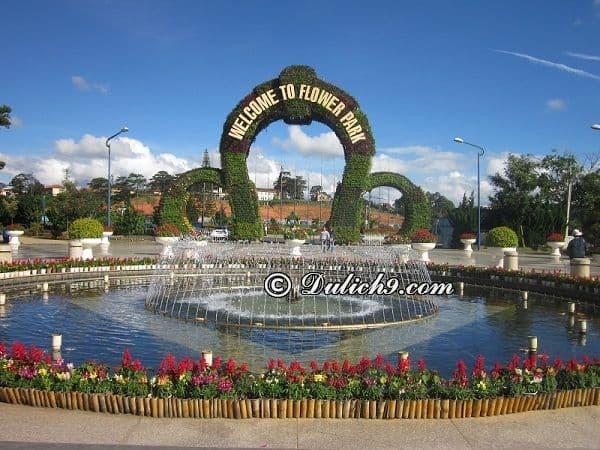 Kinh nghiệmtham quan vườn hoa thành phố Đà Lạt: Giá vé tham quan và lưu ý khi tham quan vườn hoa Đà Lạt