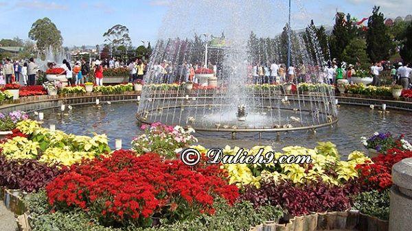 Giá vé & giờ mở cửa vườn hoa thành phố Đà Lạt: Hướng dẫn đi tham quan, check in trong vườn hoa thành phố Đà Lạt