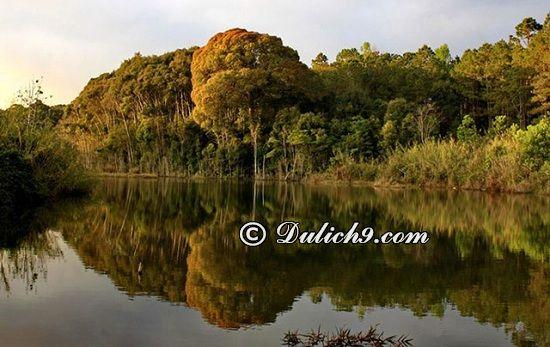 Nên đi đâu chơi khi du lịch Kon Tum? Địa điểm du lịch nổi tiếng ở Kon Tum