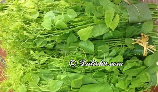 Rau bò khai - đặc sản nổi tiếng Thái Nguyên: Nên ăn món gì khi phượt Thái Nguyên?