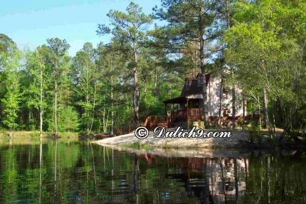 Hồ Đại Lải/ Khu nghỉ dưỡng bậc nhất ở Vĩnh Phúc: Phượt Vĩnh Phúc nên đi đâu tham quan, vui chơi?