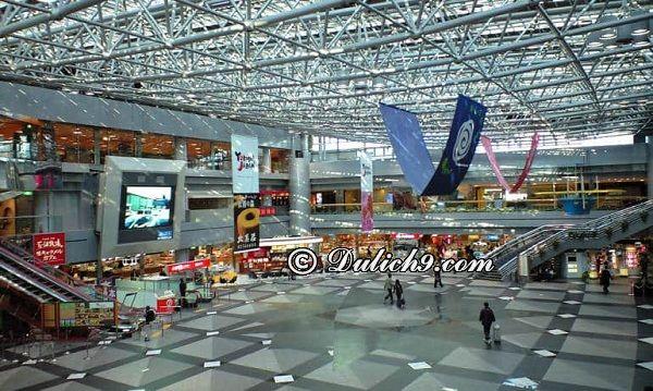 Cách di chuyển từ Tokyo tới Sapporo: Hướng dẫn đường đi, các phương tiện đi Sapporo từ Tokyo