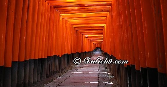 Lịch trình đi Nhật Bản 5 ngày:Kyoto- Osaka- Hiroshima- Nara: Hướng dẫn đi tham quan, vui chơi ở Nhật Bản 5 ngày