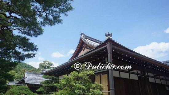 Du lịch Nhật Bản 5 ngày tự túc nên đi đâu? Hướng dẫn lịch trình tham quan, vui chơi ở Nhật Bản trong 5 ngày