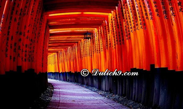 Hướng dẫn đi lại, di chuyển khi du lịch Kyoto - Kinh nghiệm du lịch Kyoto