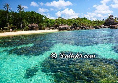 Thời điểm lí tưởng lặn biển ngắm san hô ở đảo Phú Quốc: Kinh nghiệm lặn biển ngắm san hô khi du lịch đảo Phú Quốc