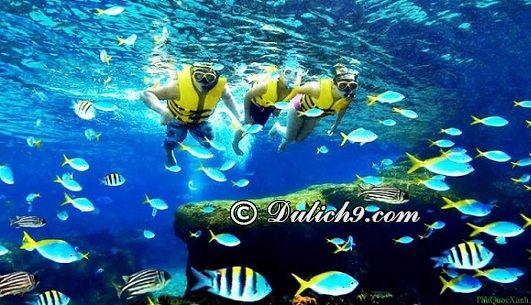Kiểm tra dụng cụ trước khi lặn biển Phú Quốc: Hướng dẫn lặn biển ngắm san hô khi du lịch Phú Quốc