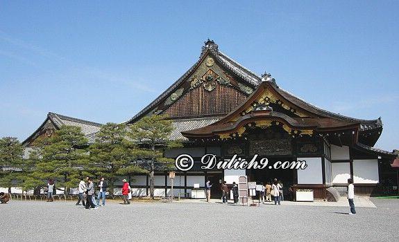 Lâu đài Nijo/ đi đâu chơi gì khi tới Kyoto? Địa điểm tham quan, vui chơi, du lịch nổi tiếng ở Kyoto