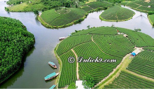 Danh lam cảnh đẹp, nổi tiếng ở Nghệ An: Du lịch Nghê An nên đi đâu chơi?