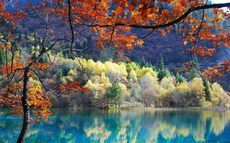 Du lịch Cửu Trại Câu nên đi mùa nào đẹp, thuận lợi và tuyệt vời nhất? Du lịch Cửu Trại Câu mùa nào, tháng mấy lý tưởng nhất?