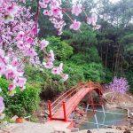 Hoạt động vui chơi, giải trí ở khu sinh thái Thiên Phú Lâm, Sóc Sơn: Hướng dẫn đi du lịch ở khu du lịch Thiên Phú Lâm