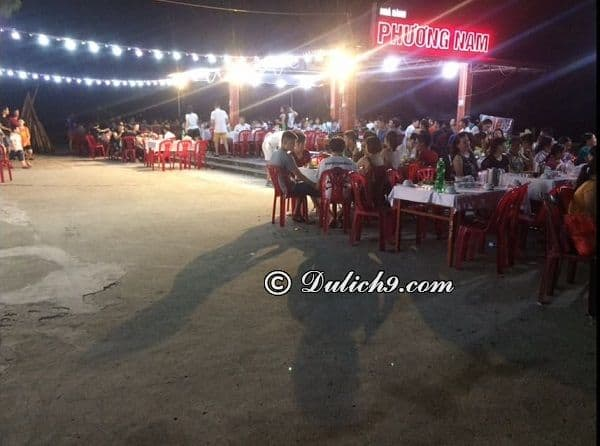 Nhà hàng hải sản ngon, giá bình dân ở Đồ Sơn: Địa chỉ quán ăn ngon ở Đồ Sơn nổi tiếng