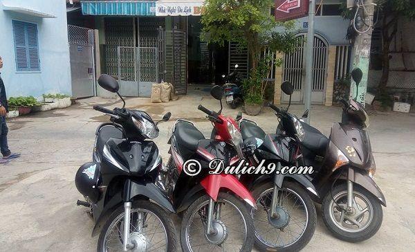 Địa điểm thuê xe máy ở Quy Nhơn: Địa chỉ những cửa hàng cho thuê xe máy ở Quy Nhơn giá rẻ, uy tín