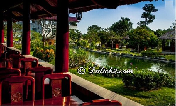 Địa điểm tham quan, vui chơi hấp dẫn ở khu sinh thái Ngọc Linh. Kinh nghiệm đi khu du lịch sinh thái Ngọc Linh Sóc Sơn
