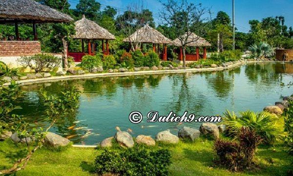 Kinh nghiệm đi khu sinh thái Ngọc Linh, Sóc Sơn