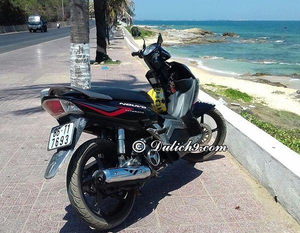Thuê xe máy ở đâu Mũi Né Phan Thiết giá rẻ, uy tín: Kinh nghiệm thuê xe máy ở Mũi Né chi tiết