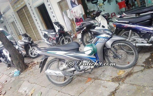 Thuê xe máy ở đâu Tuy Hòa giá rẻ, chất lượng tốt? Kinh nghiệm thuê xe máy ở Tuy Hòa Phú Yên