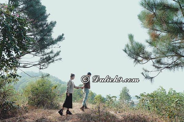 Jungle House - Địa điểm du lịch gần Hà Nội dành cho 2 người lãng mạn nhất. Nên đi đâu hẹn hò cho 2 người gần Hà Nội