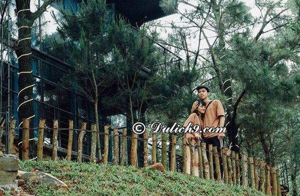 The Choai Villa - Địa điểm du lịch lãng mạn gần Hà Nội cho cặp đôi. Đi đâu hẹn hò gần Hà Nội đẹp, lãng mạn nhất