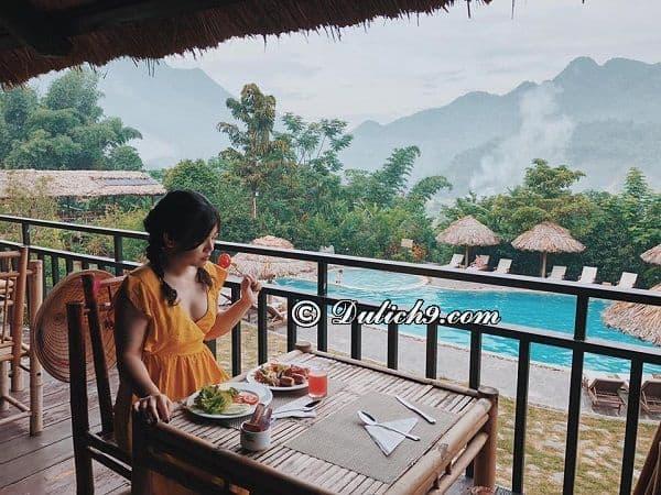 Ăn uống gì ngon và hấp dẫn khi tớiMai Châu Ecolodge? Hướng dẫn đi chơi ở Mai Châu Ecolodge tự túc, giá rẻ