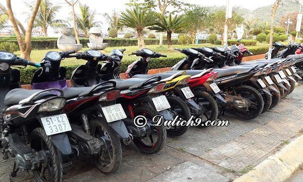 Kinh nghiệm thuê xe máy ở Vũng Tàu uy tín, giá rẻ. Thuê xe máy ở đâu Vũng Tàu?