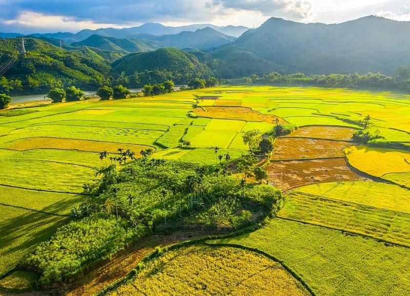Kinh nghiệm du lịch Quảng Ngãi, thời điểm du lịch Quảng Ngãi
