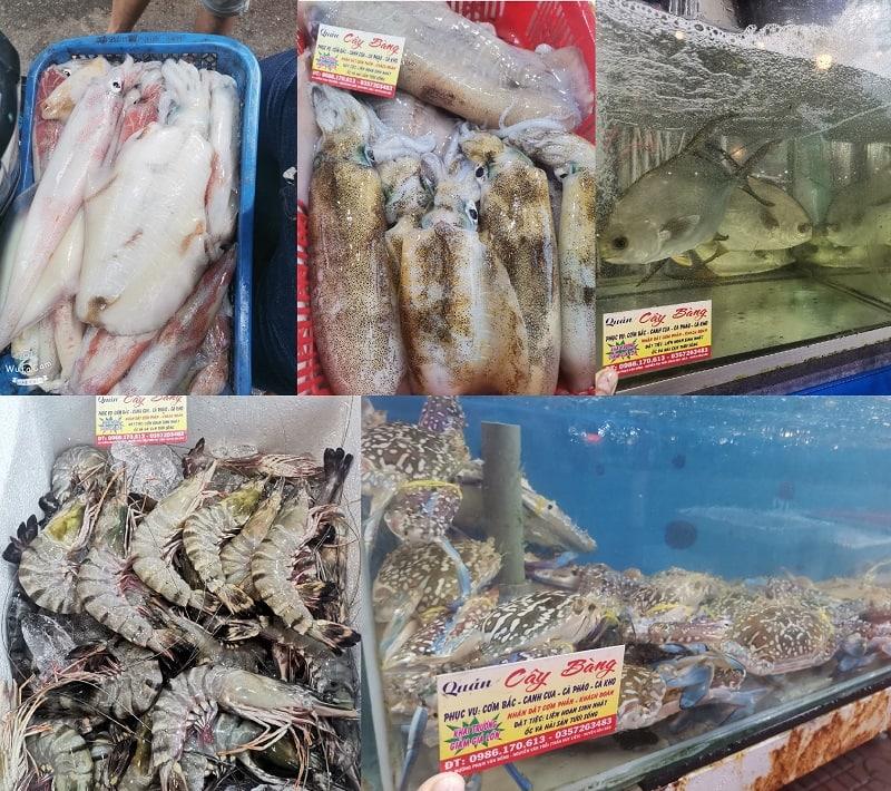 Quán ăn ngon ở Côn Đảo giá bình dân, nổi tiếng. Côn Đảo có nhà hàng hải sản nào ngon?