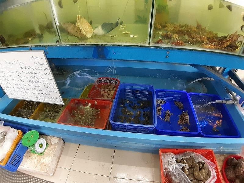 Quán hải sản ngon giá rẻ nổi tiếng ở Nha Trang: Địa chỉ ăn hải sản ngon, giá bình dân ở Nha Trang