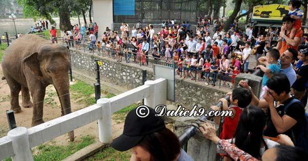 Khu vui chơi cho trẻ em ở Hà Nội dịp nghỉ lễ 30/4 và 1/5. Nên cho trẻ em đi đâu chơi dịp 30/4 - 1/5 ở Hà Nội?