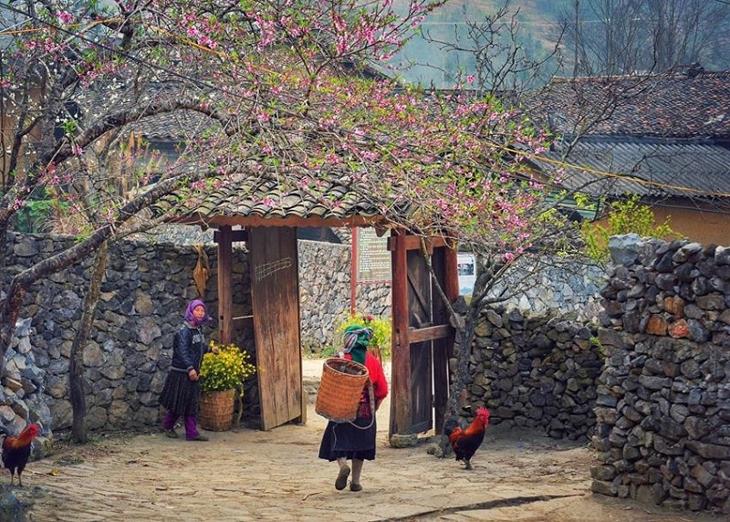 Địa điểm du lịch Hà Giang, khu phố Cáo