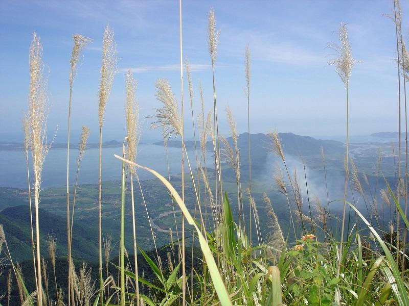 Kinh nghiệm đi vườn quốc gia Bạch Mã
