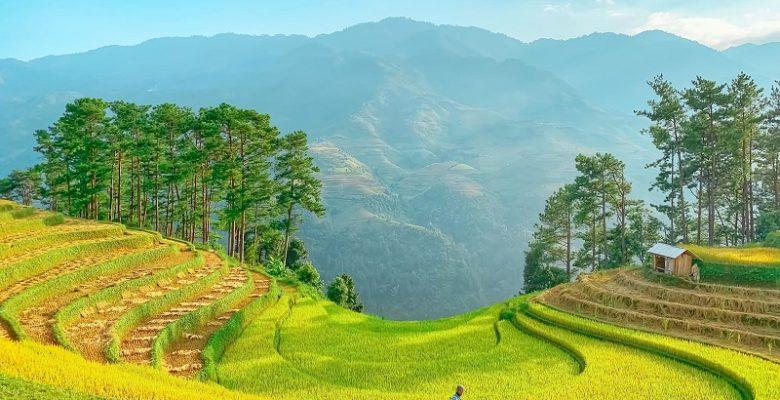 Kinh nghiệm du lịch Mù Cang Chài, Mù Cang Chải có gì đẹp?