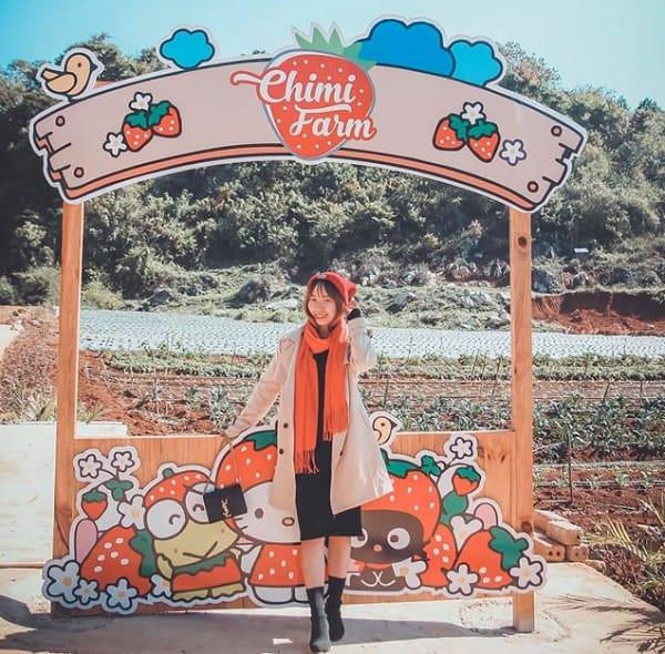 Địa điểm chụp ảnh đẹp ở Mộc Châu