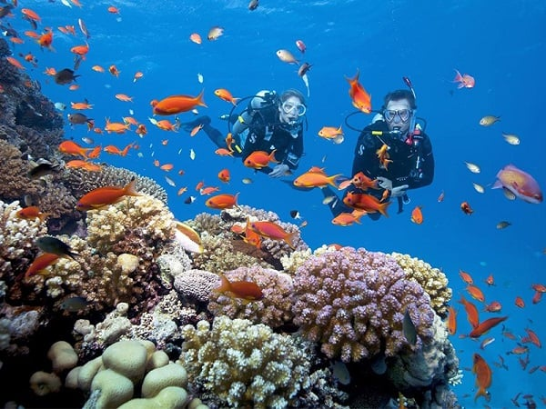 Kinh nghiệm du lịch Nha Trang/ Lặn biển ngắm san hô ở Nha Trang